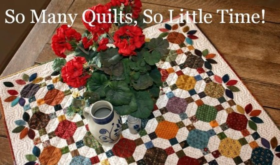 so many quilts so little time