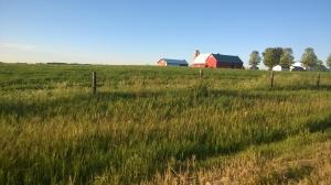 Indiana Barn