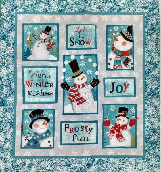 frosty fun panel